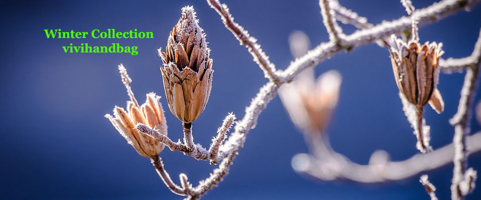Winter-Collection-4